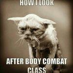 e7e9c9e574890a90f57082e2a51fdb57--body-combat-les-mills after